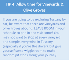 tip 4 vineyards and olives